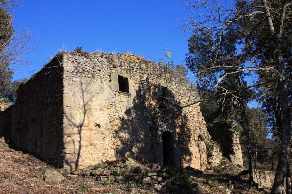 1014: Para rehabilitar in Palol de Revardit