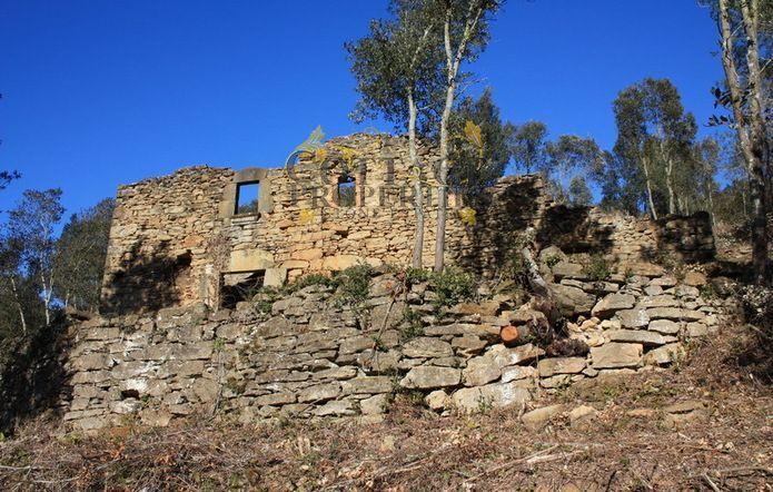1015: Para rehabilitar in Palol de Revardit