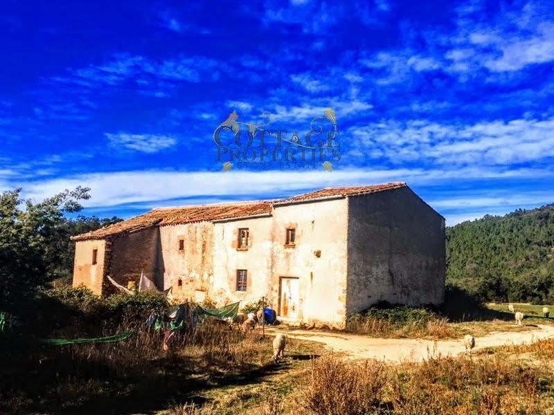 1055: Para rehabilitar in Riudarenes