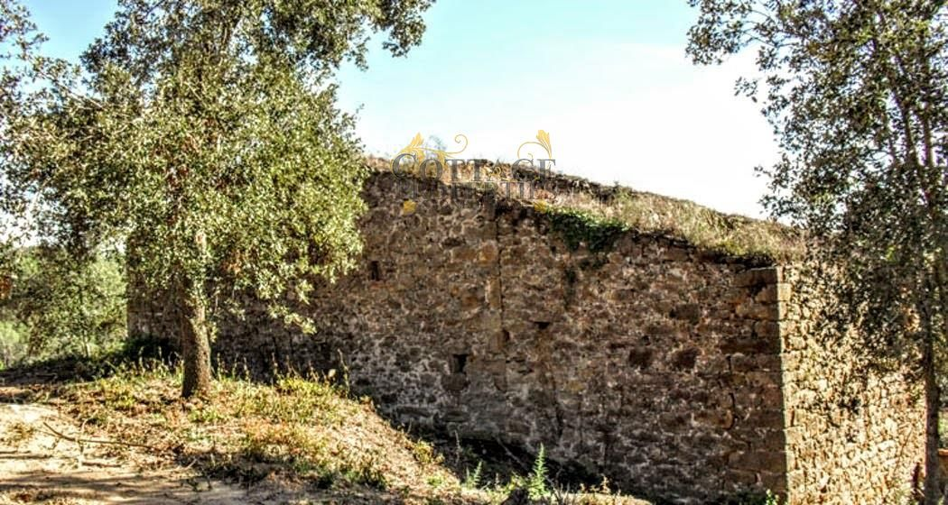 1057: Villa in Palol De Revardit