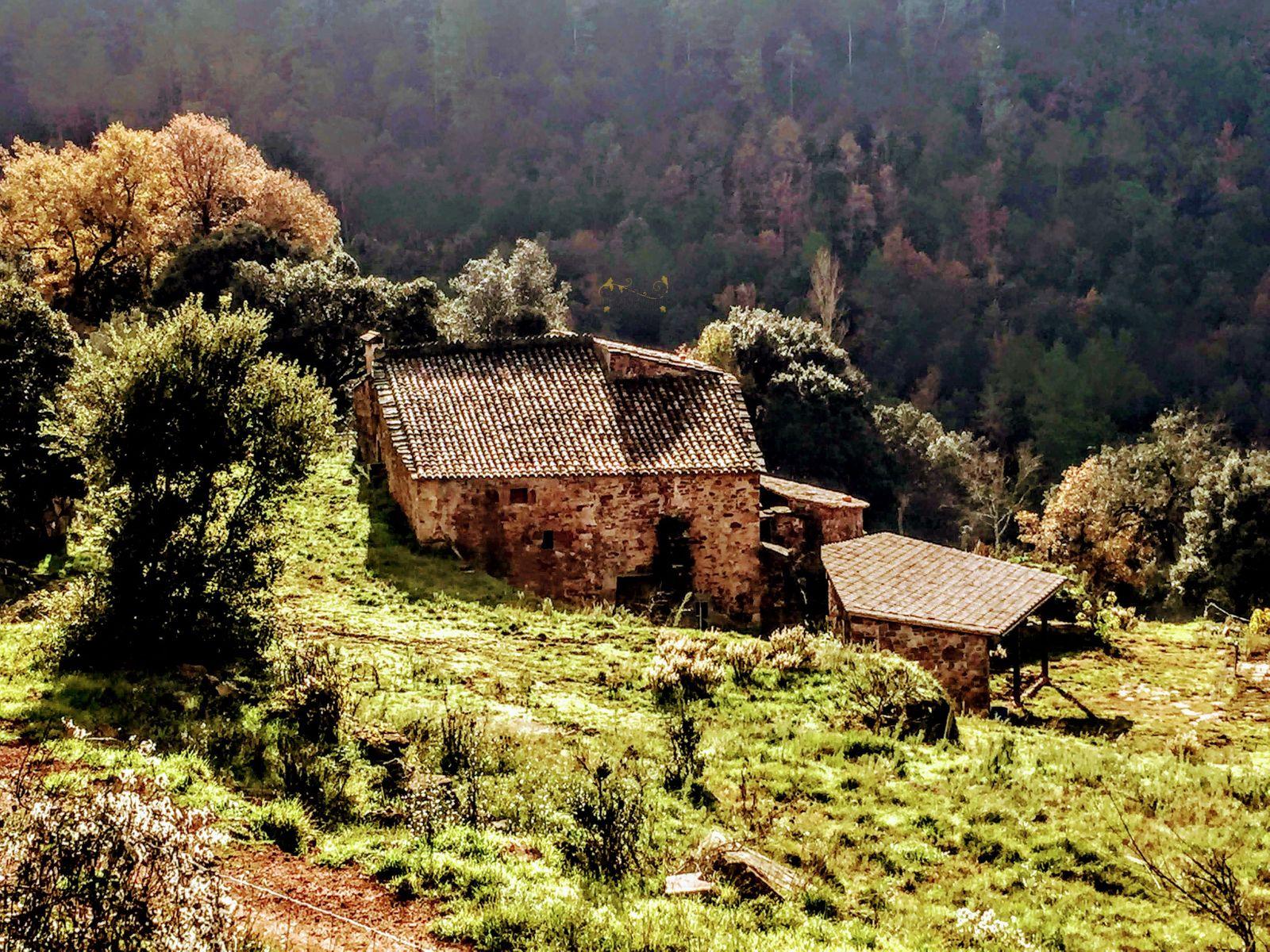 1202: Villa in Tagamanent