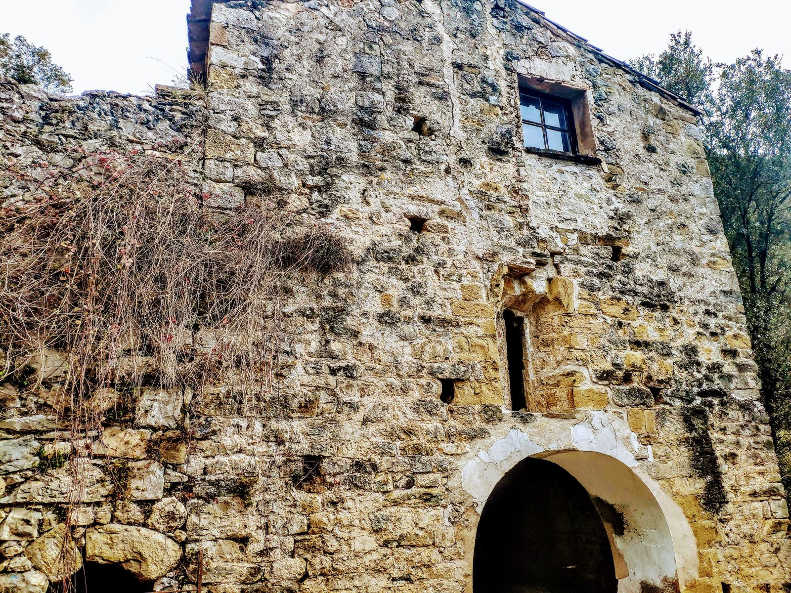 1203: Para rehabilitar in Montagut