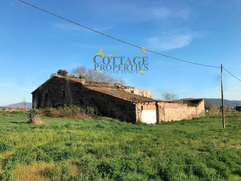 1306: Para rehabilitar in Cardedeu