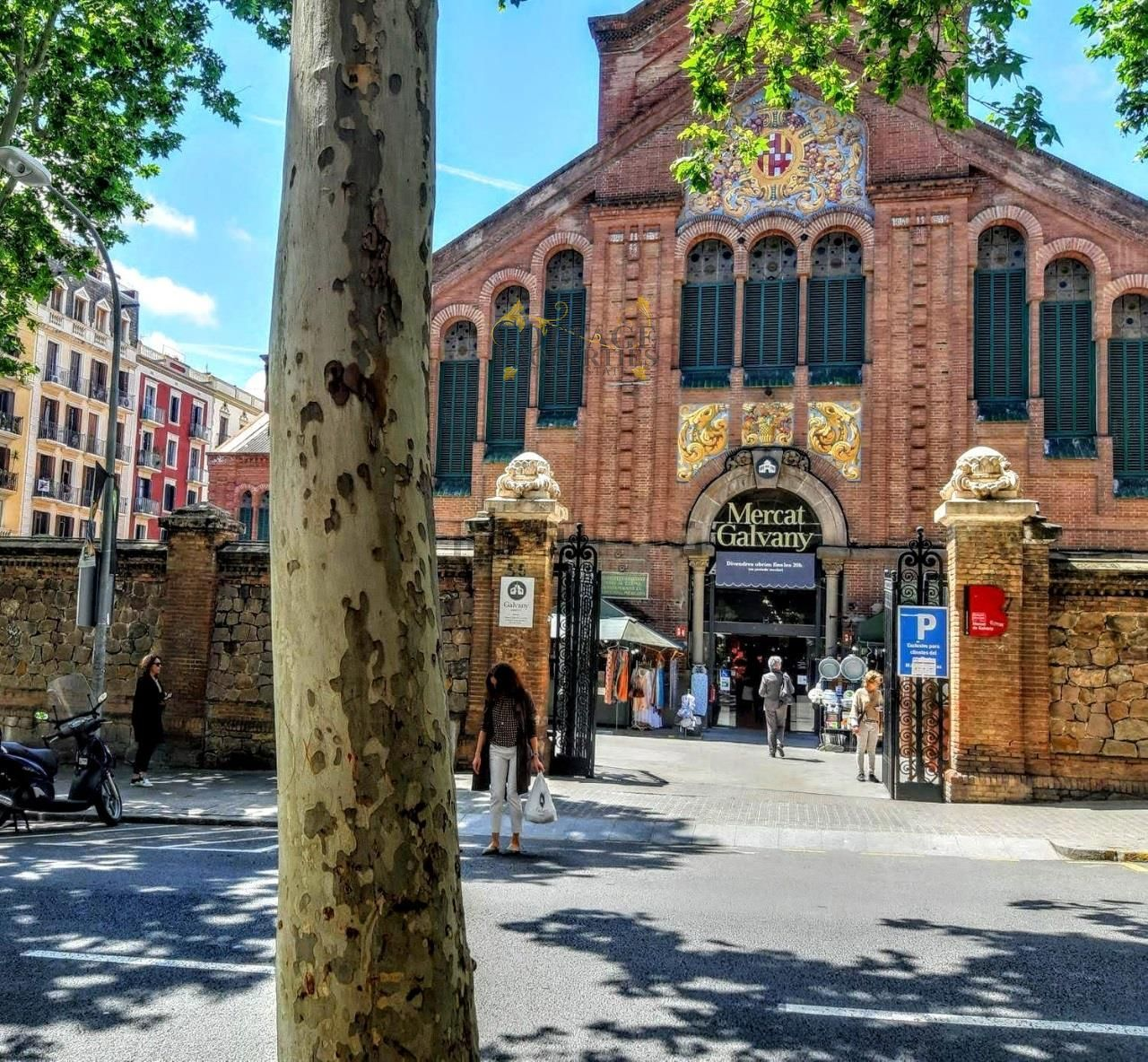 1323: Appartment in Barcelona