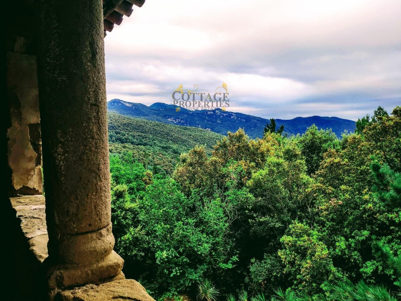 Vistas a la montaña